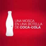 Mosca-Coca-cola